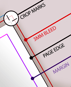 Bleed and crop marks
